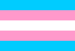 The Transgender Pride Flag