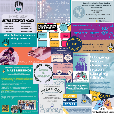 Collage of SAPAC marketing materials from the year including Volunteer Training, Capturing My Healing, Speak Out, workshops, and more.