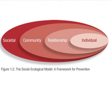 A Social Ecological Model:a framework for prevention